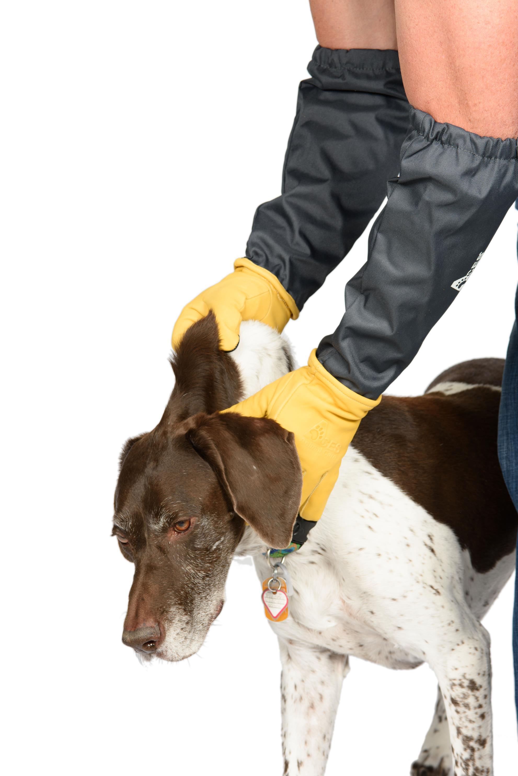 Critter Gloves