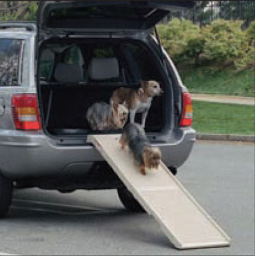 Pet Step Ramp