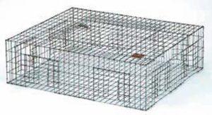 Pigeon Live Animal Trap