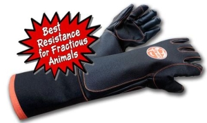 Son of Beast Protective Glove